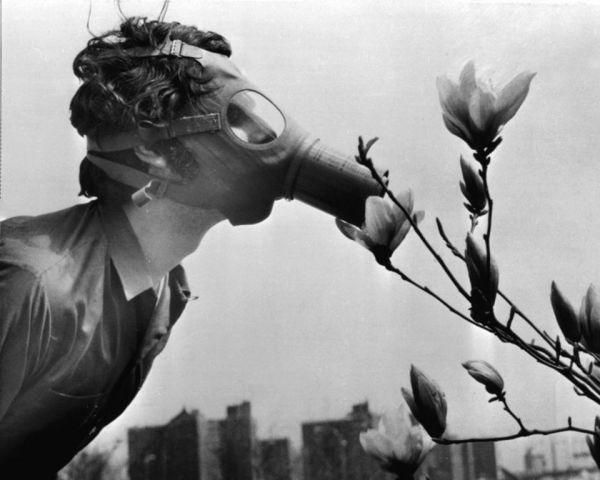A Pace College student wearing a gas mask smells a magnolia blossom on Earth Day, April 22, 1970 (photo: AP Photo)