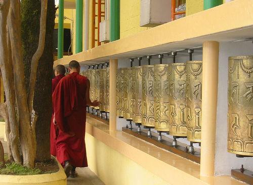 Mcleodganj, Dharamsala, monastery, dharamsala monks