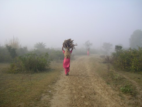 Punjab, India, countryside