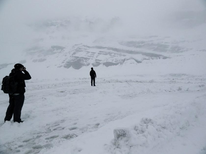 Jasper glacier, Athabasca glacier, Columbia icefields, Jasper icefields
