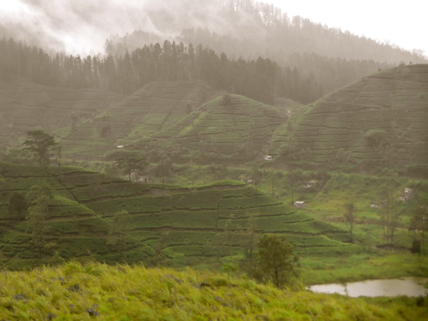 Sri Lanka tea plantations, Sri Lanka monsoon, Sri Lanka rains, train to Ella, Sri Lanka pictures