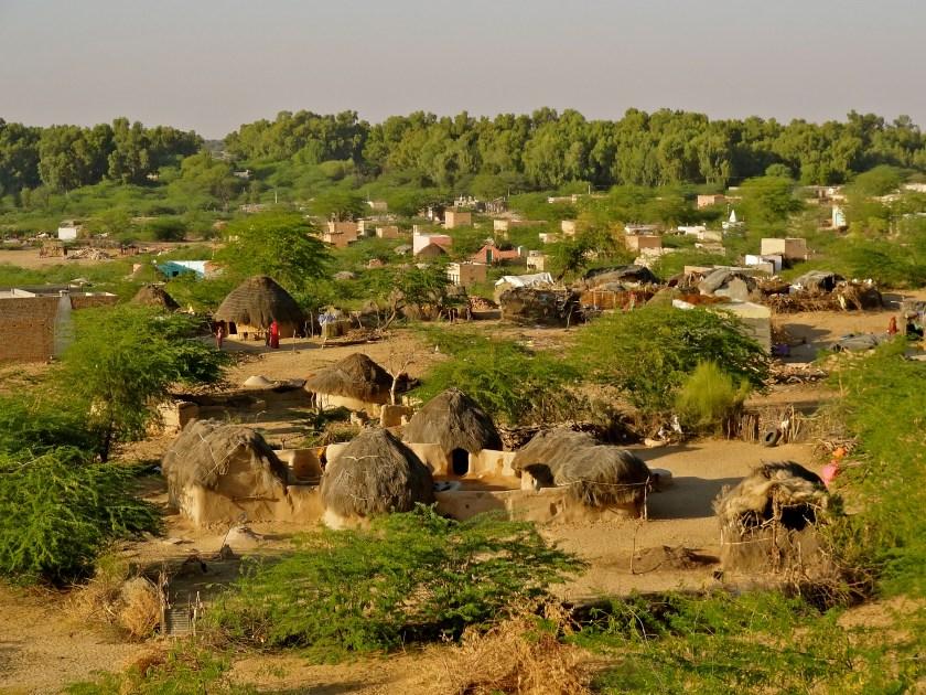 Rajasthan village, Indian villages, Rajasthan photos, Thar Desert Rajasthan, Phalodi