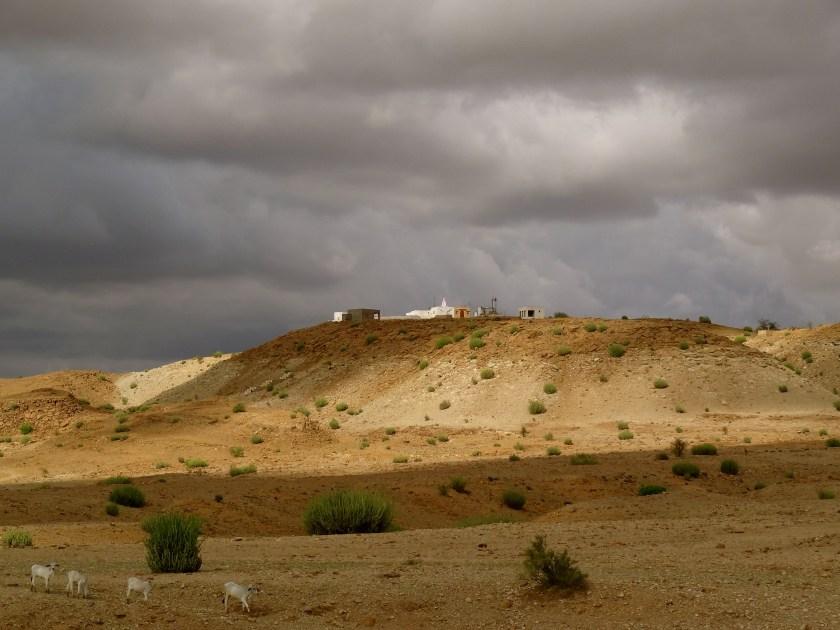 thar desert rain