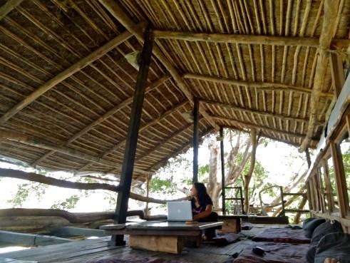 ken river lodge, panna hotels, panna national park