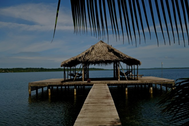Dolphin bay cabanas panama, panama airbnb, bocas del toro airbnb