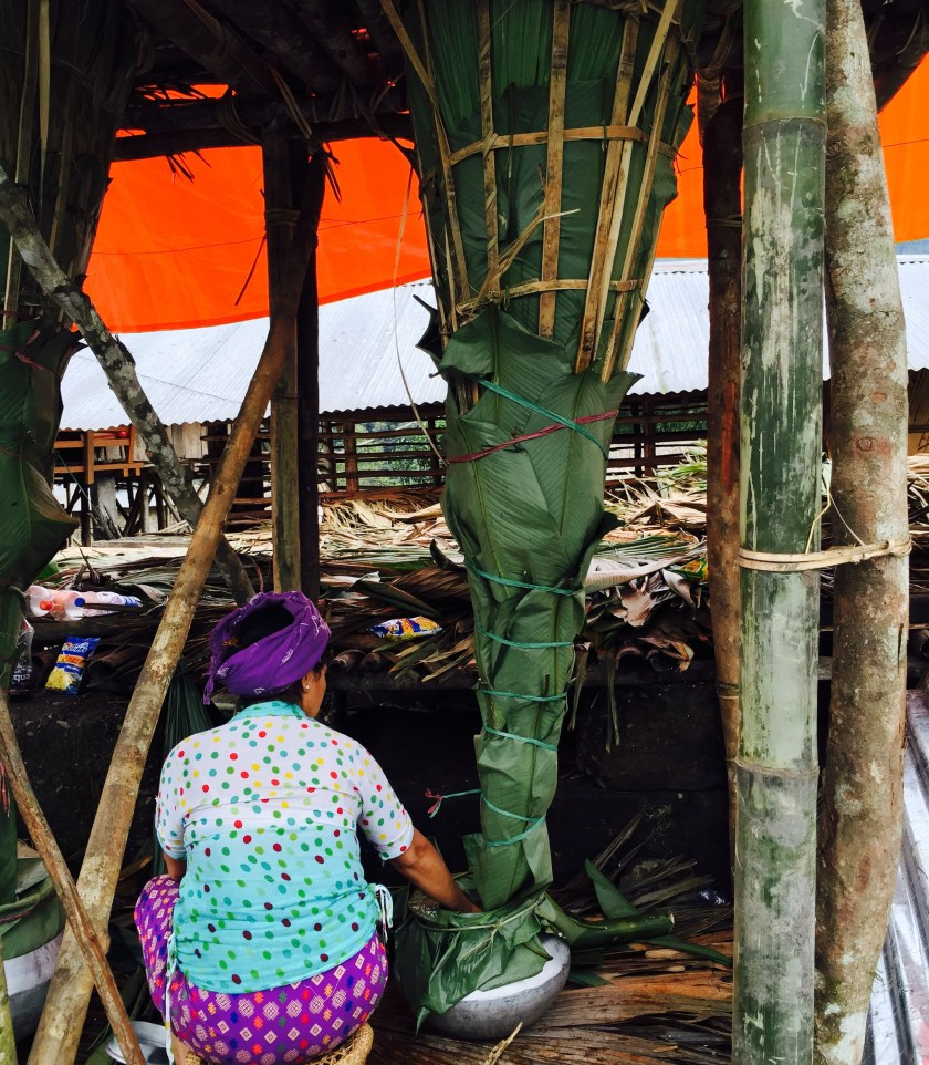 apong arunachal pradesh, people arunachal pradesh, galo tribe, mopin festival