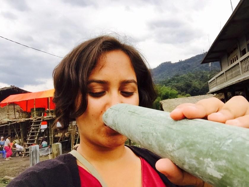 arunachal pradesh apong, mopin festival, apong