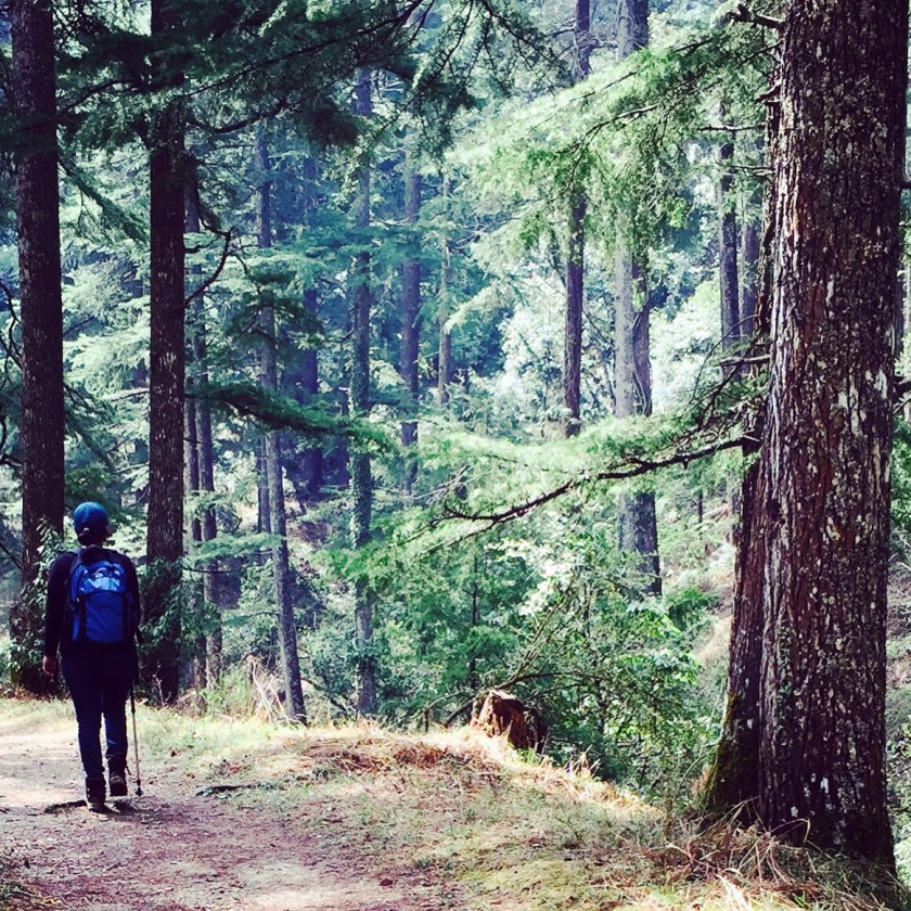 solo female travel india, indian travellers