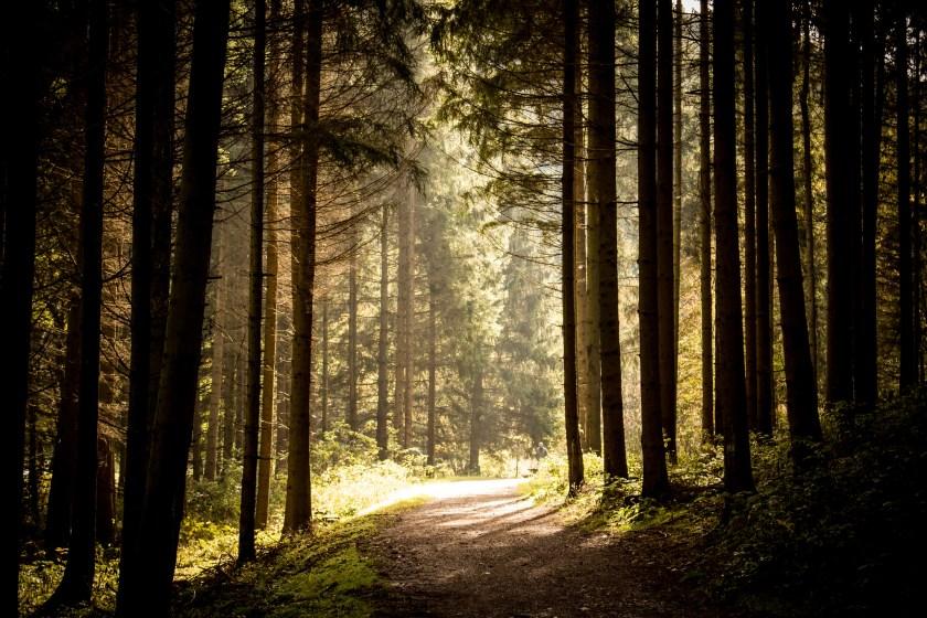 Germany hiking, hiking trails europe