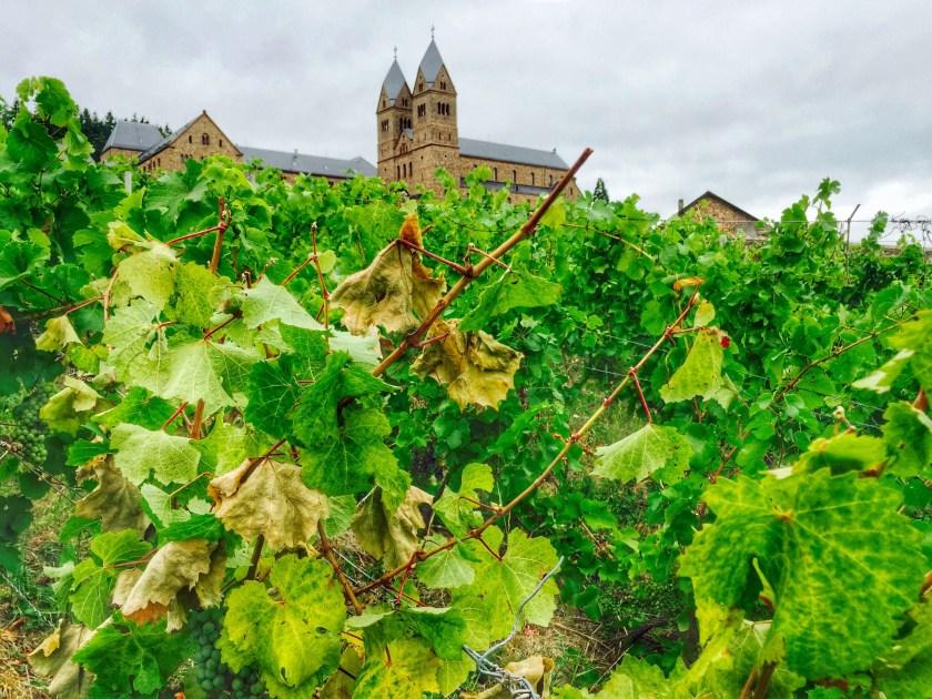 St Hildegard abbey, nunnery rheingau, nuns wine tasting rhine