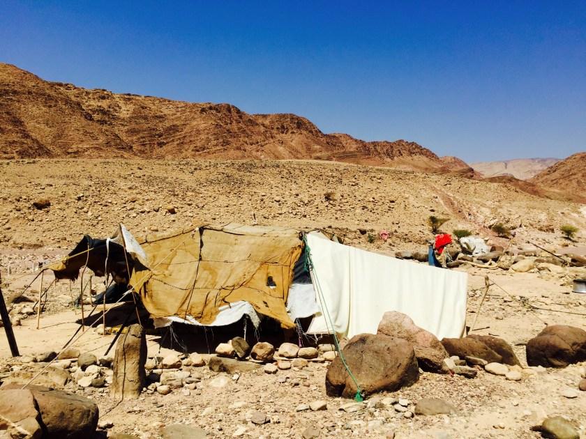 Jordan bedouins, Wadi Finan, Dana Biosphere reserve, Jordan people, Jordan culture