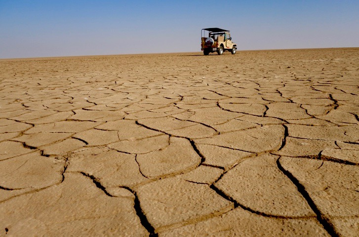 little rann of kutch, gujarat places to visit