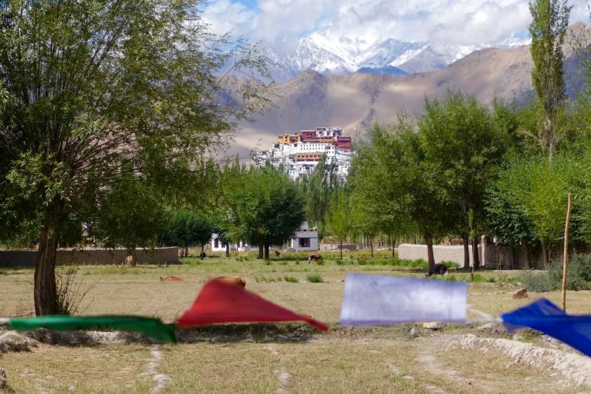solo travel ladakh, ladakh travel stories, ladakh travel blogs