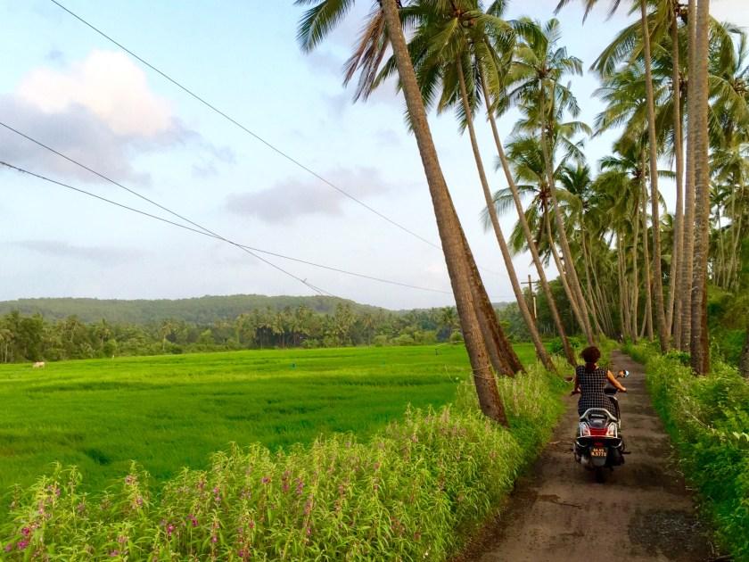 goa monsoon, goa rains, goa offbeat, goa travel blogs