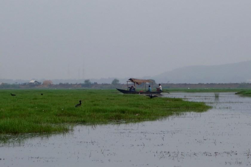 Mangalajodi, orissa ecotour, ecotourism odisha, mangalajodi odisha
