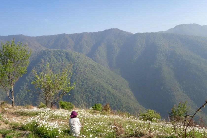 Goat village, uttarakhand offbeat, uttarakhand travel