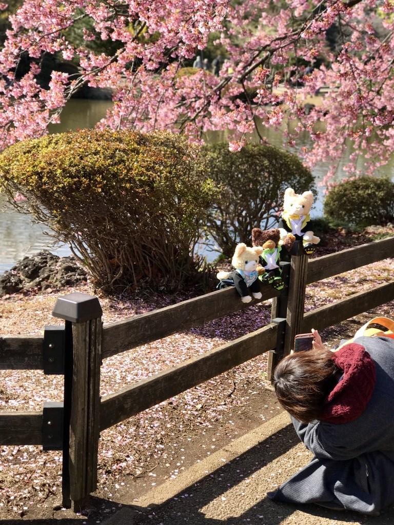 quirky japan, japanese people, japan culture, sakura japan
