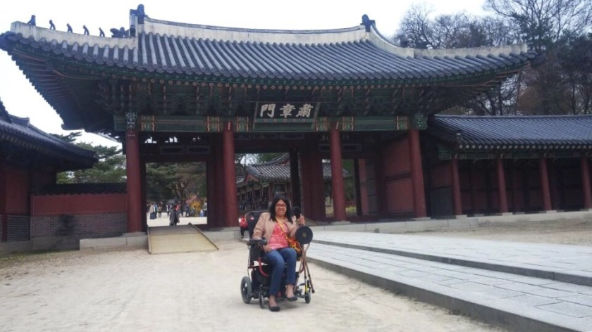 wheelchair traveller, disabled traveller, solo female traveller india, parvinder chawla, woman travelling alone in India