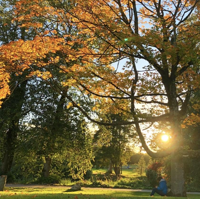 scotland autumn, aberdeenshire, scotland travel blogs