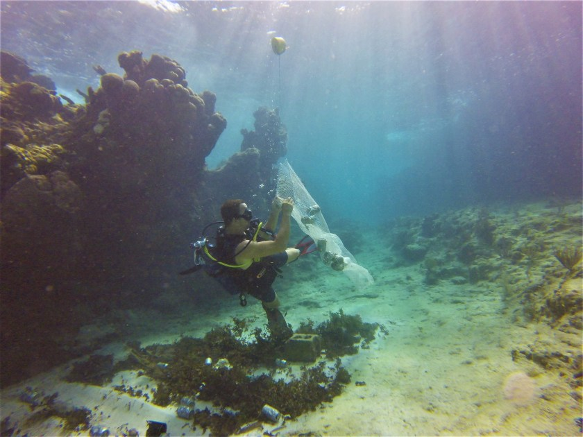 volunteering in cuba, cuba volunteer trip, cuba diving