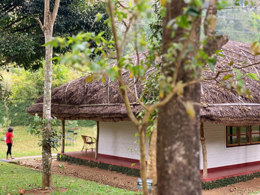 spice village thekkady, cgh earth