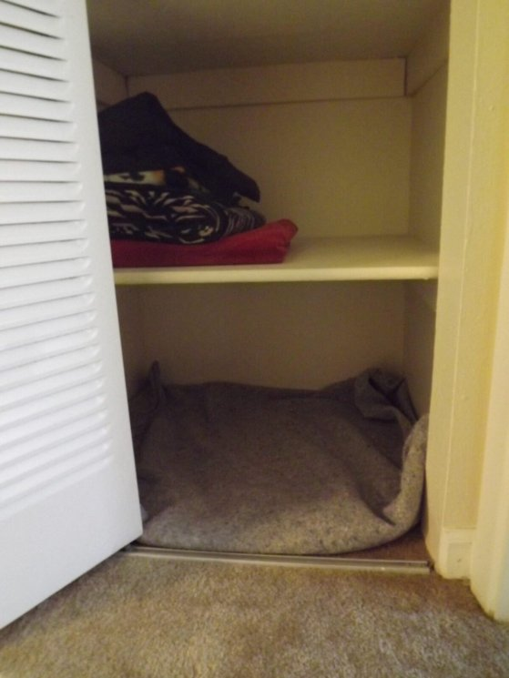 A shot of the closet, with the sliding door open.