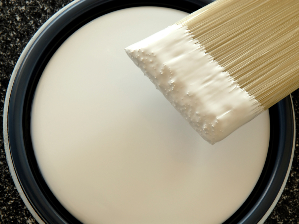 Image result for paint shades white
