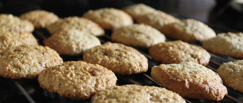 Oatmeal Protein Cookie