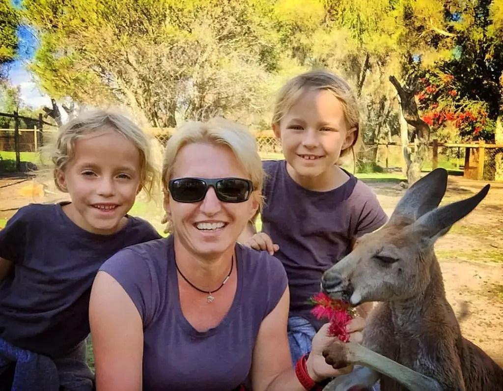 we-and-the-kangoo
