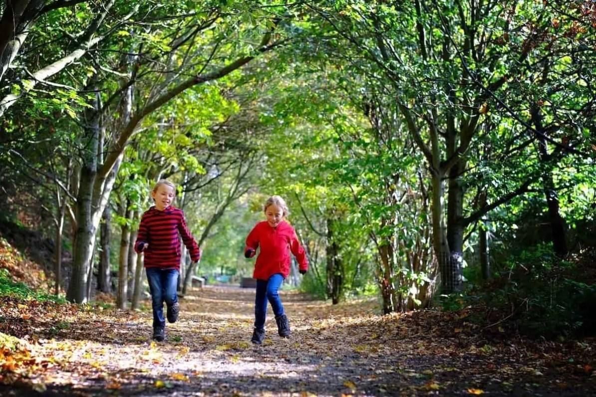 mudchute farm, farm in London, the travelling twins
