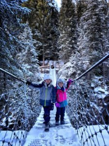 Passo Rolle, Hanging bridge in Violins Forest,