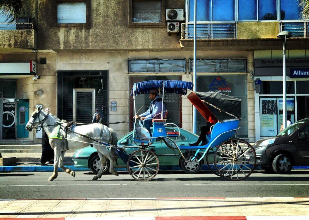 morocco travel tips - horse carriage