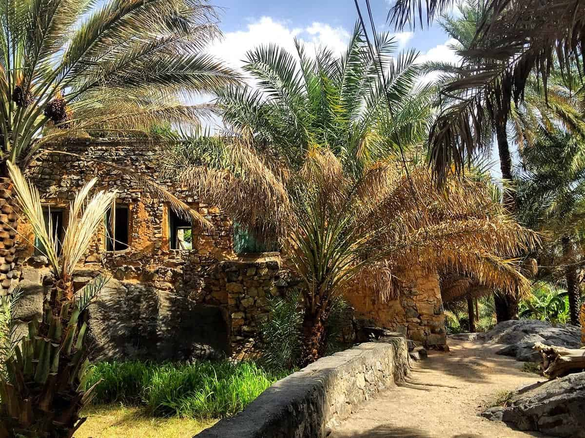 Misfat-al-Abriyeen oasis in Oman, oasis in the mountains
