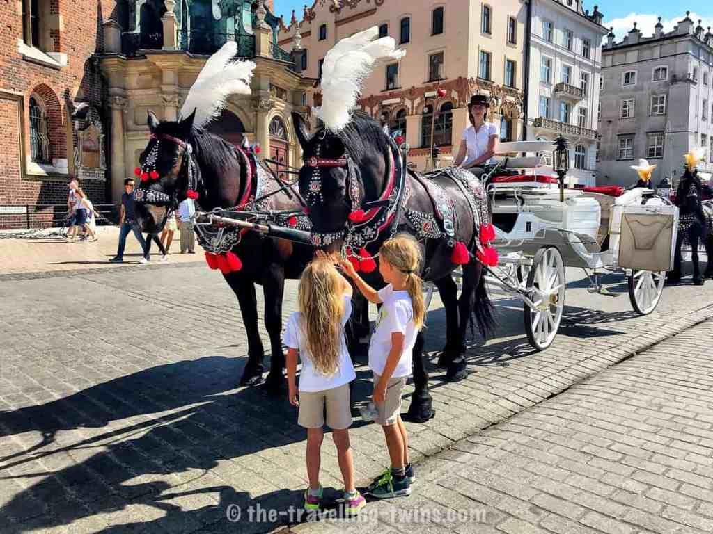 Krakow kids with horses carrage st mary's basilica in the background (old brick church)