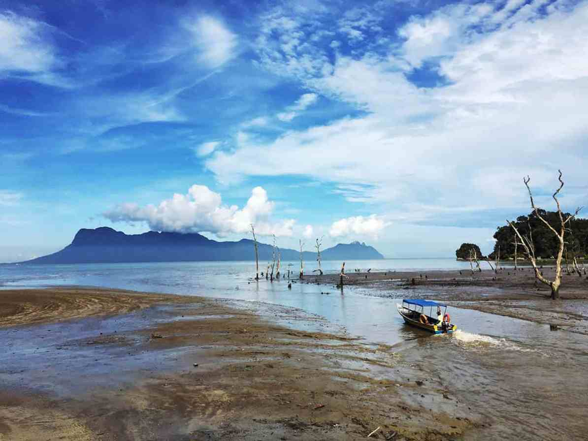 thigns to do in kuching - visit bako national park