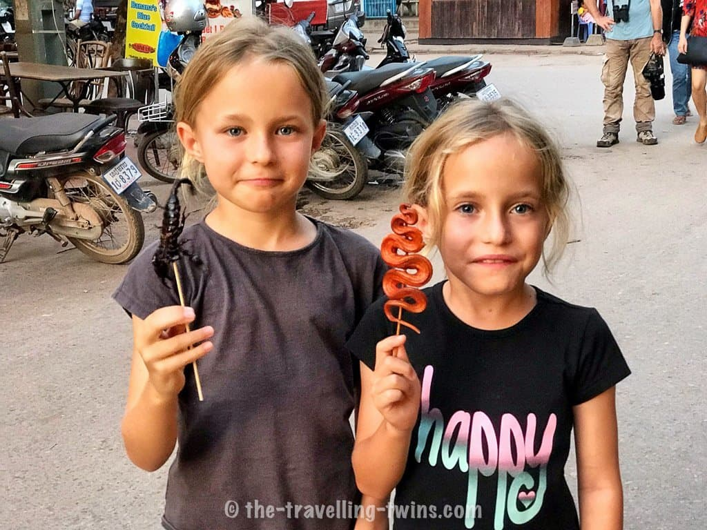 things to do in Siem reap with kids- strange food,  circus siem reap,  bus from siem reap to phnom penh,  siem reap accommodation,  where to stay in siem reap,  angkor wat entrance fee