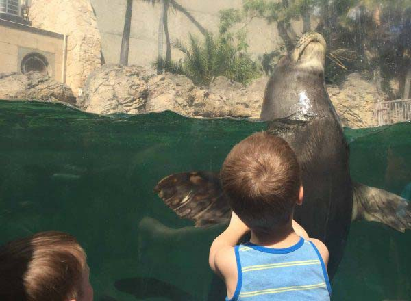 worlds aquariums