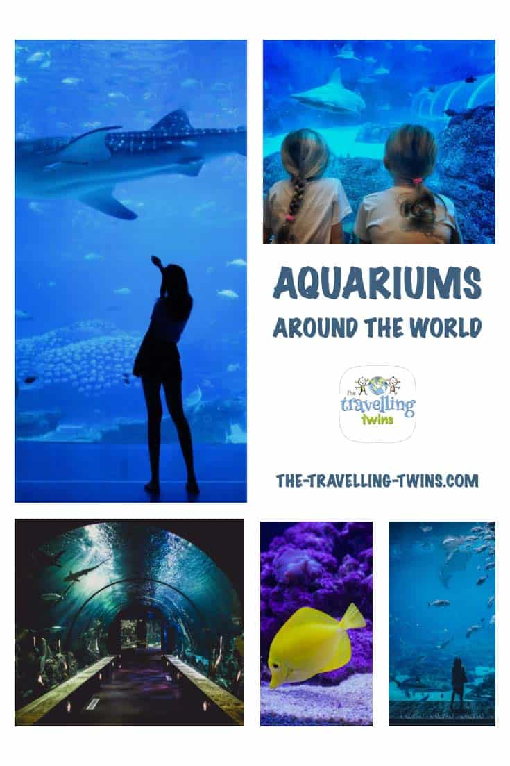 Best Aquriums in the world to visit with children
