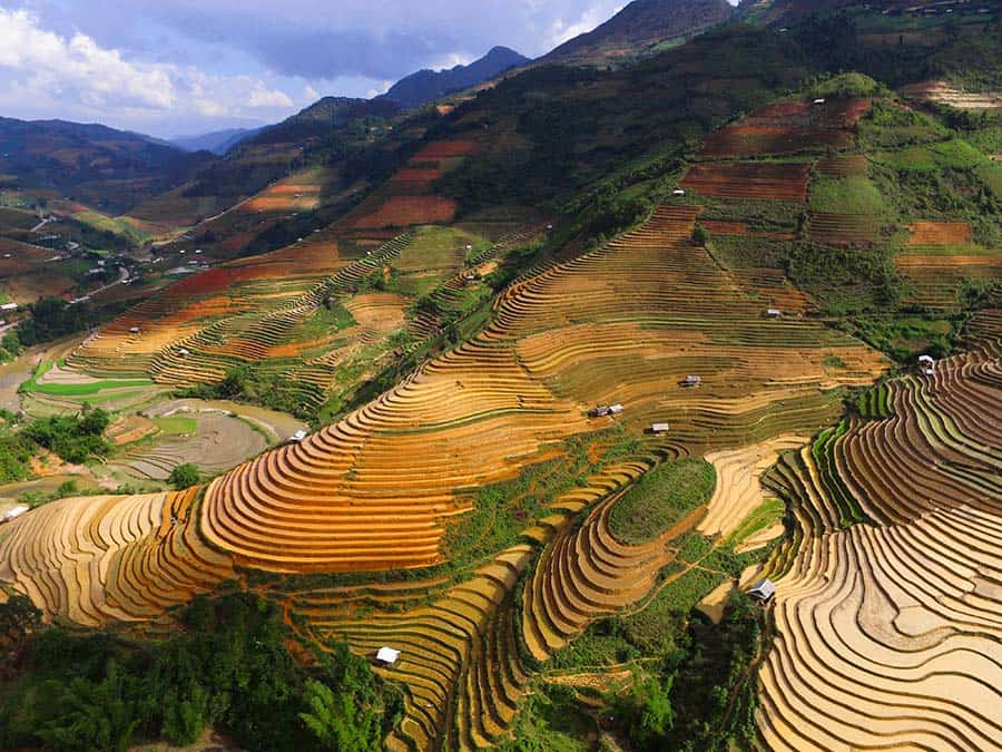 Sapa - Rice terraces - Vietnam Facts