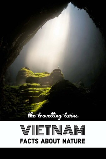 Do you know what are three main religion in Vietnam? DO you know what is favourite Vietnamese food? We visited Vietnam several times. We love exploring it and learning interesting facts about Vietnam and Vietnamese life. #vietnamfacts #vietnaminterestingfacts #exploringvietnam
