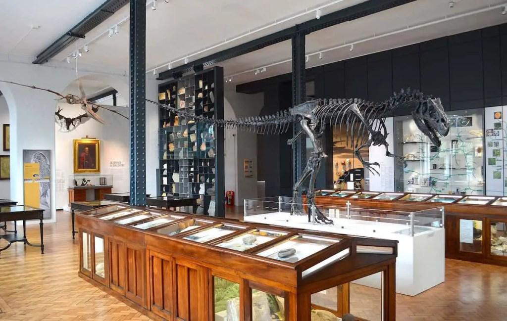 cool birmingham museum