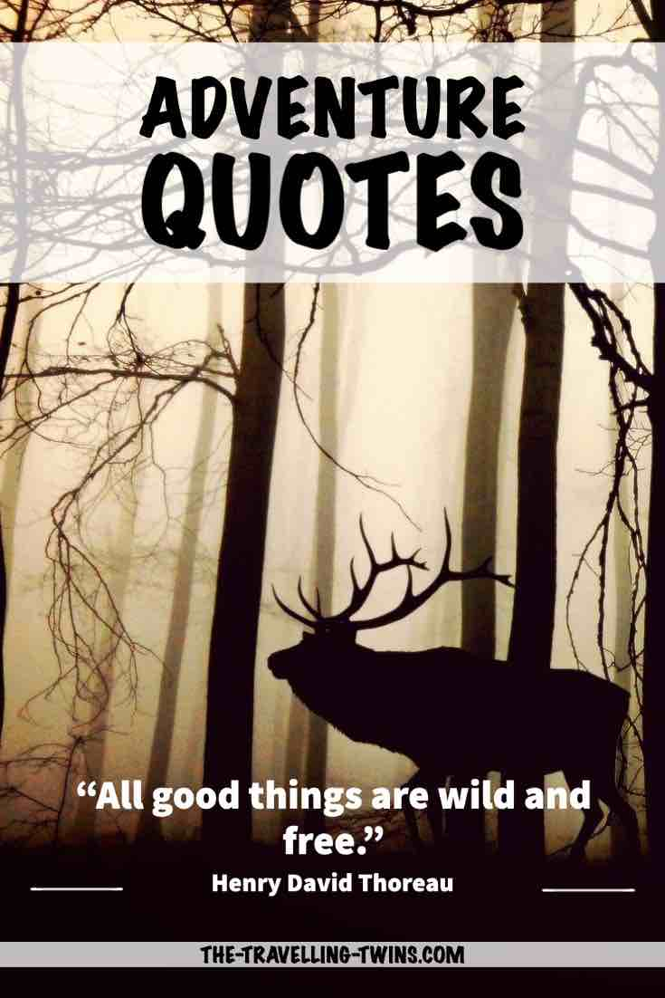 I went to the woods because I wished to live deliberately, to front only the essential facts of life, and see if I could not learn what it had to teach, and not, when I came to die, discover that I had not lived.
