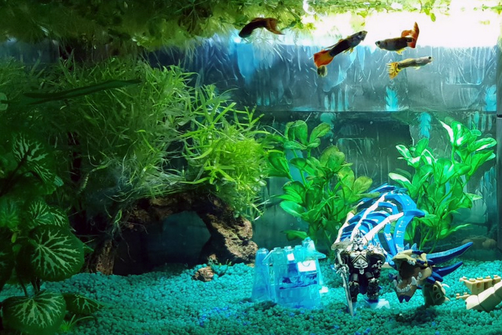 Heavily planted Guppy tank - World of Warcraft Theme