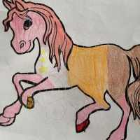 Designing our Dream Horse with Petplan Equine
