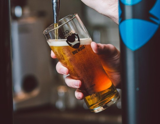 BrewDog Opens Bar Bookings As Its Expected Pubs Will Reopen This Spring