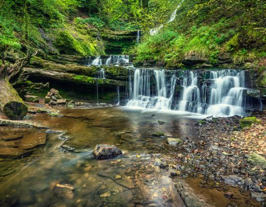7 Of The Best And Most Scenic River Walks In Yorkshire