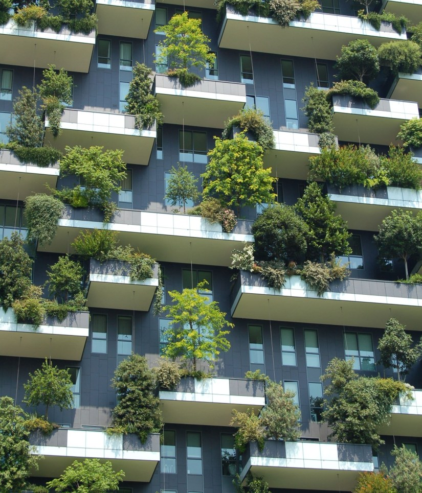 modern apartment building with white balconies, each planted with large shrubs and ornamental trees