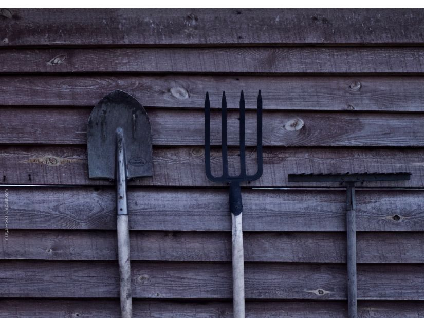 weather-beaten clapboards with garden tools leaning against them