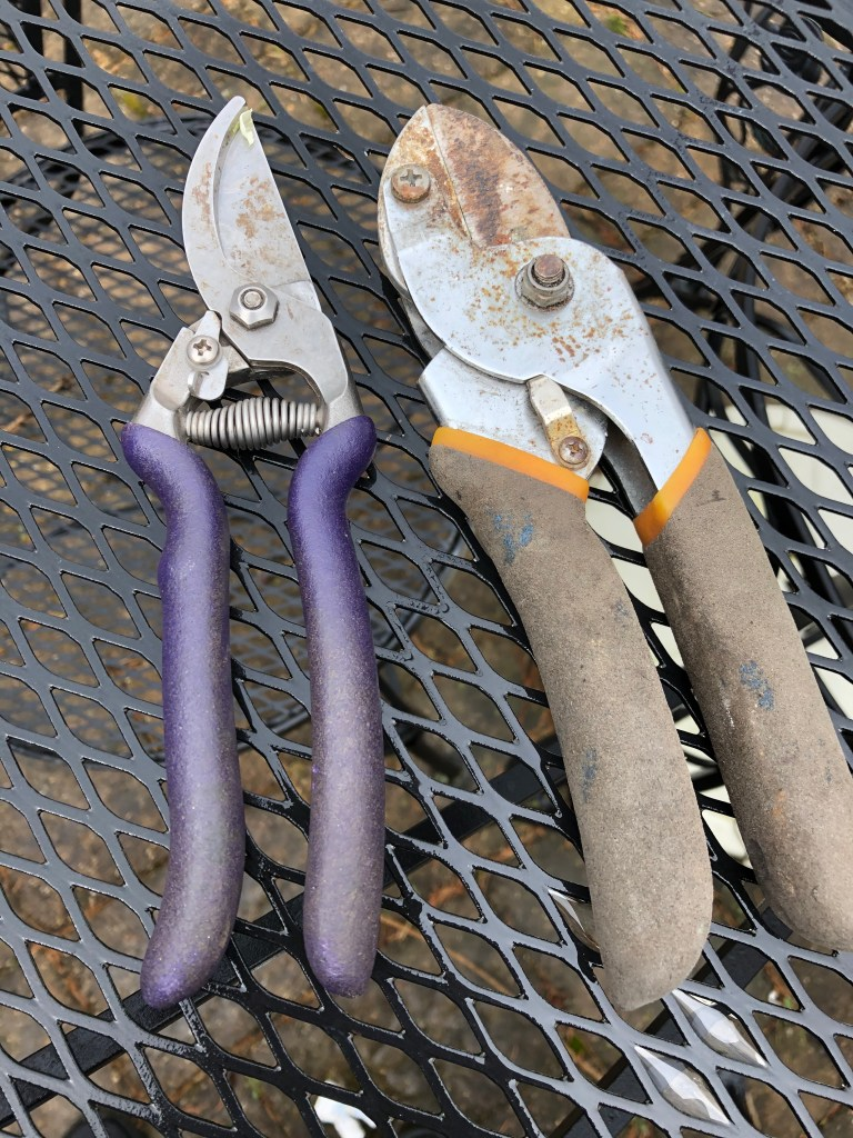 well-used, dirty hand pruners with soft grips