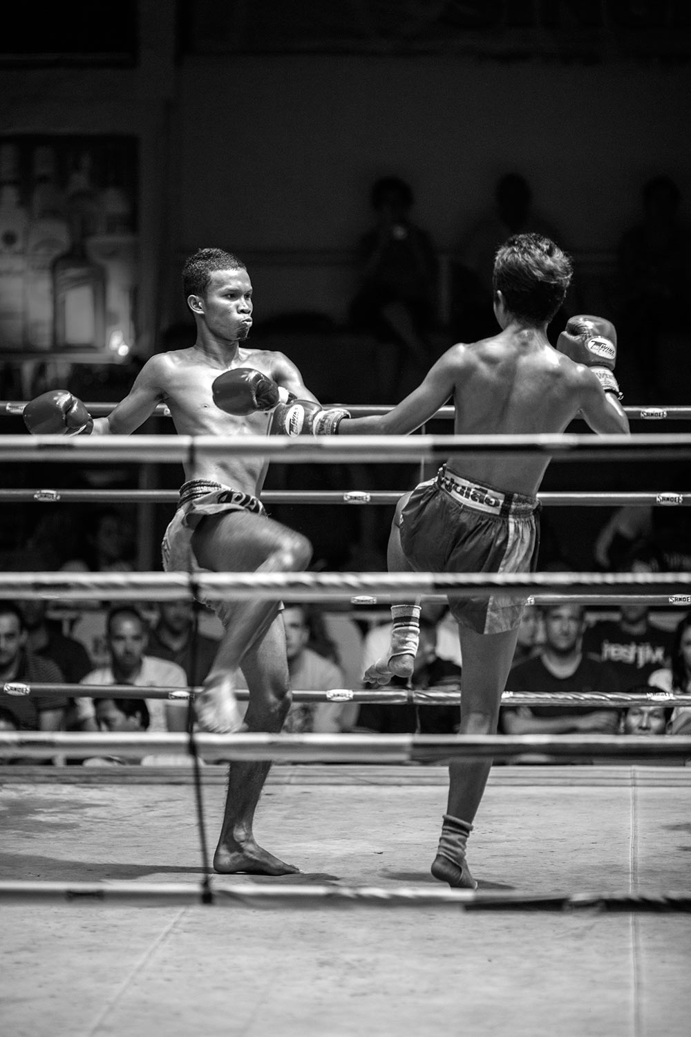 Muay Thai fighters in the rink